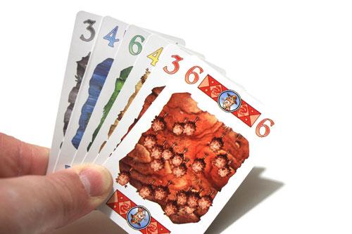 Ugo! - de speelkaarten (Foto & duim: Henk Rolleman)